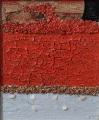 Composizione 2 di cretti sabbie rosse e sassi 2010