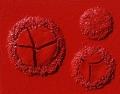 Monocromo rosso