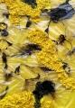 Plastica combusta gialla n. 20